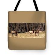 Elk Herd Tote Bag