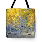 Elk In Rmnp Colorado Tote Bag