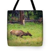 Elk In The Field Tote Bag