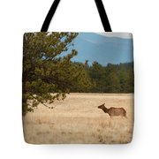 Elk In The Fossil Beds Tote Bag