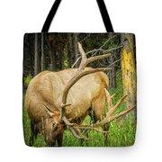 Elk In The Woods Tote Bag