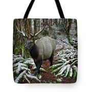 Elk In Winter Tote Bag