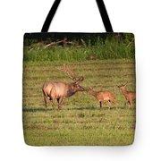 Elk Kisses Tote Bag by Jemmy Archer