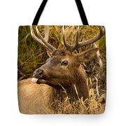Elk Raspberry For Tom Tote Bag