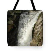 Elk River 2 Tote Bag