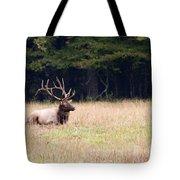 Elk Sitting Down Tote Bag
