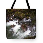 Elkhorn Creek 2 Tote Bag