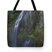 Elkview Falls Tote Bag