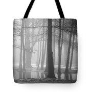 Ellacoya Fog - January Thaw Tote Bag