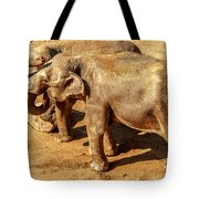 Ellephants Tote Bag