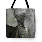 Elly At Lunch Tote Bag
