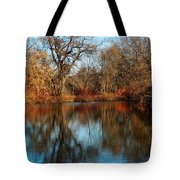 Elm By The Connecticut River In Autumn Tote Bag