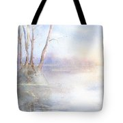 Elmore Park In Winter Tote Bag
