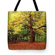 Elora Gorge Campsite In Fall Tote Bag