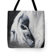 Elsa's Itch Tote Bag