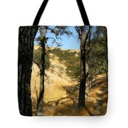Elyon's Doorway Tote Bag
