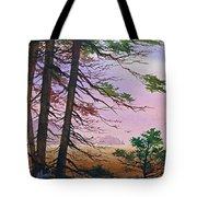 Embrace Of Dawn Tote Bag