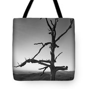 Embrace With Open Arms Tote Bag
