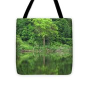 Emerald Green Reflections Tote Bag