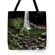 Emerald Pool Tote Bag
