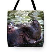 Emerged Tote Bag