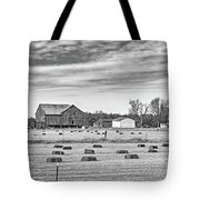 Emergence _ The Hues Of Spring Bw Tote Bag