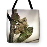 Emerging - Cicada 2 Tote Bag