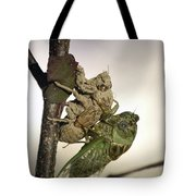 Emerging - Cicada 2 Tote Bag