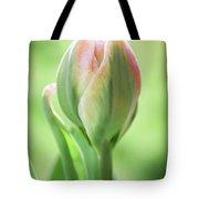 Emerging Ice Cream Tulip Tote Bag