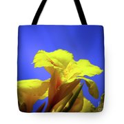 Emerging Into The Light II Tote Bag