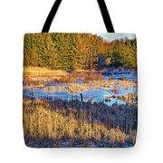 Emerging Marsh Tote Bag