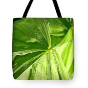 Emerging Plants Tote Bag