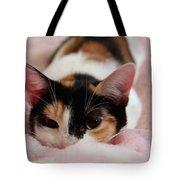 Emily, Too Precious  Tote Bag