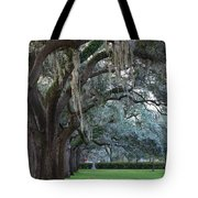 Emmet Park In Savannah Tote Bag
