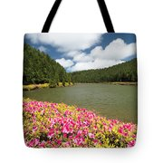 Empadadas Lakes II Tote Bag