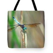 Emperor Dragonfly  Tote Bag