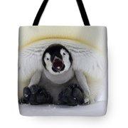 Emperor Penguin Aptenodytes Forsteri Tote Bag by Rob Reijnen