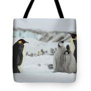 Emperor Penguin Landscape Tote Bag