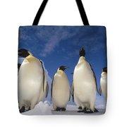 Emperor Penguins Antarctica Tote Bag
