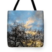 Empire Of Angels Tote Bag