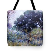 Empty Lot Tote Bag