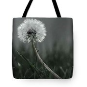 Empty Promises Endless Wishes  Tote Bag