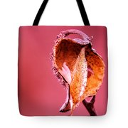 Empty Seed Pod  Tote Bag
