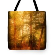 Enchanted Path 2 - Allaire State Park Tote Bag