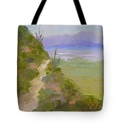 End Of Day At Gates Pass Tote Bag