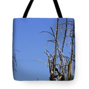 End Of Season Tote Bag