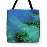 End Of Times Tote Bag