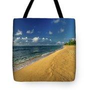 Endless Beach Tote Bag