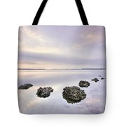 Endless Echoes Tote Bag