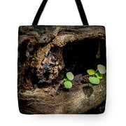 Ends Become Beginnings Tote Bag